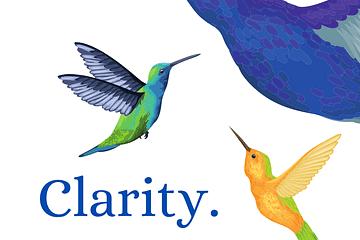 ShaaniCreates Clarity